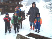 Pony riding in a snow storm