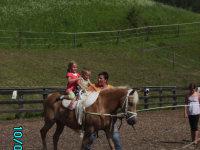 Voltaschieren bei einem nahegelegenen Reiterhof!