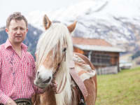 Pferd La Cruze mit Hausherr