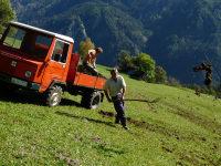 Das Mistausbringen ist eine wichtige Arbeit - auf den steilen Wiesen - Handarbeit