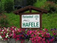 Schriftzug mit Blumen