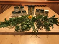 Fresh herbs from the garden and herbal salt