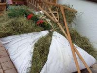 Frisches Heu mit Holzrechen un Gabel