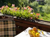 Obstgarten Balkon