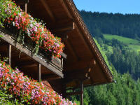 Blumenschmuck am Bauernhaus