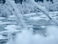 Fluß im Winterkleid