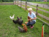 Unseren Hennen gehts gut, gerne legen sie Ihr Frühstücksei