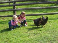 Alle freuen sich über frische Eier von glücklichen Hennen
