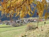Dorfblick Zedlach vom Waldrand aus