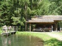 Fischteich - ca. 1 km entfernt