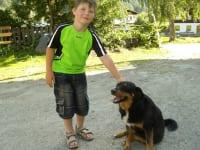 Unser Hofhund Tina