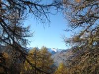 Herbststimmung in Virgental
