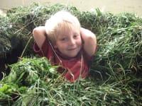 Junge im Gras