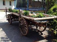 Kräuterwagen
