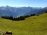 Panorama in die Zillertaler Bergwelt