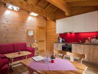 Wohn - und Essbereich mit Küchenzeile Fewo Kristberg