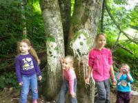 tolle Baumgesichter mit den Kindern