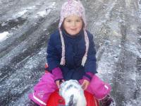 Hase Flocke mit der Hannah beim Rodeln.