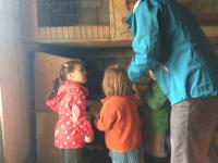 Eier holen im Nachbarstall bei der Familie Zotz.