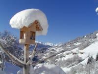 Blick vom Sallerhof Winter