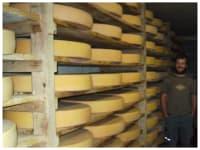 Käselager auf der Alpe