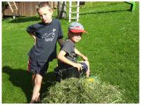 Laurin und Luca beim Heuen