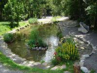 Teich bei unserer Gartenwirtschaft