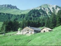 Die Alpe Obere Falz eingebettet in die Berglandschaft