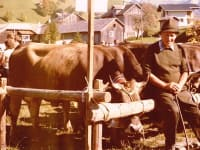 Däta Arthur bei der Viehausstellung