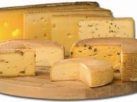 Käseangebot unseres hofeigenen Verkaufs