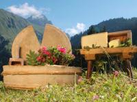 Berkäse von unserer Alpe Felle