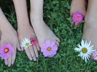 Blumen sind Wunderwerke