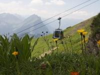 Bregenzerwald Gästecard