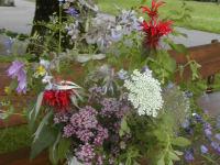 ein Blumenstrauss am Hof gepflückt