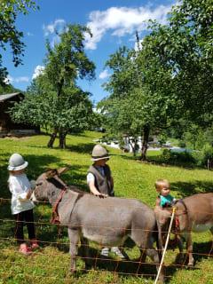 Urlaub am Bauernhof Montafon
