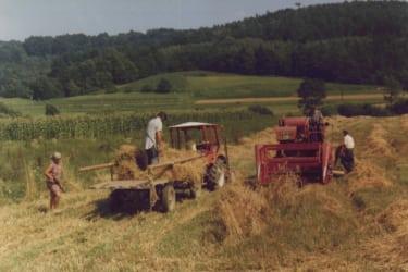 Arbeiten am Feld um 1980