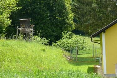 Blick hinter das Ferienhaus