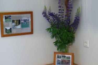 selbstgepflückte Blumen und Bilder aus früheren Zeiten