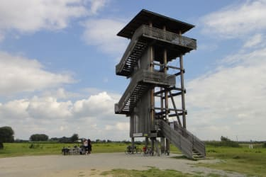 Aussichtsturm, Nationalpark Neusiedlersee