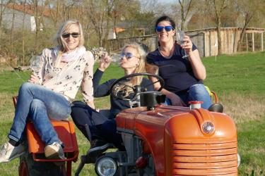 Weinkost am Traktor