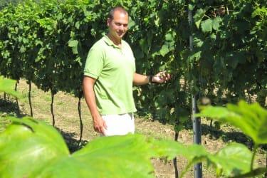 Christian im Weingarten