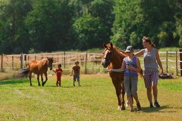 Mit den Pferden