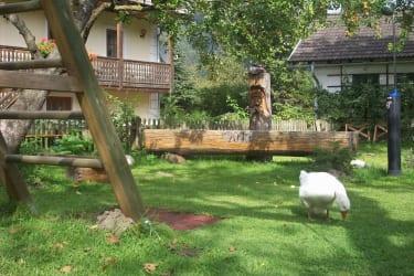 Haus im Garten, mit Brunnen und der Solardusche...und die Gans