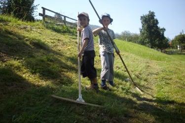 Henri und Maximilian beim Heuen