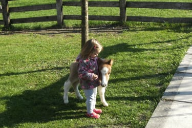 Knut mit Emelie