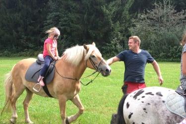 Unser Haflinger Bella und Pony Max