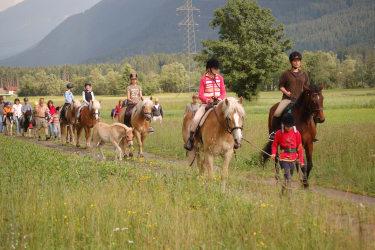 Pferdewanderung