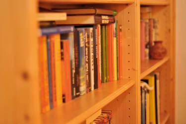Kaminstüberl Bücherecke