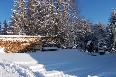Viel Holz für kalte Tage
