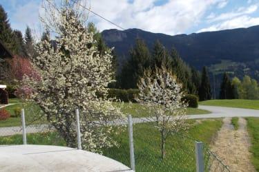 Blick von der Jauchengrube auf die saft grünen Wiesen